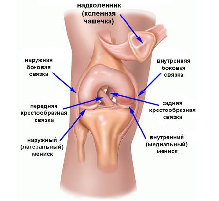 Болит колено с внутренней стороны во время беременности подвижность и хруст в суставе после ушиба